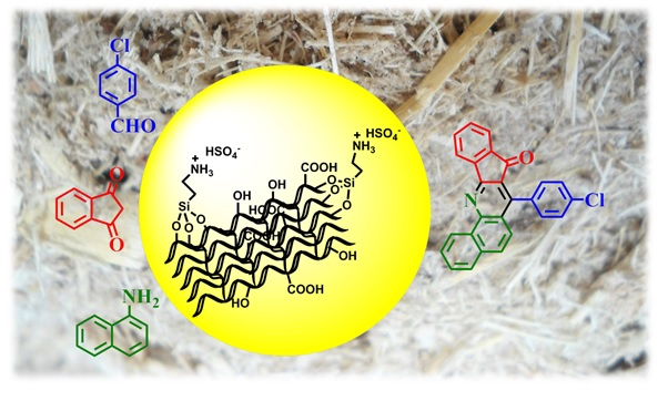 Using of modified sugarcane bagasse as a green and inexpensive catalyst for the synthesis of indeno[1,2-b]quinolin-8-one derivatives